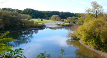 Humber River Trails in Kleinburg Ontario